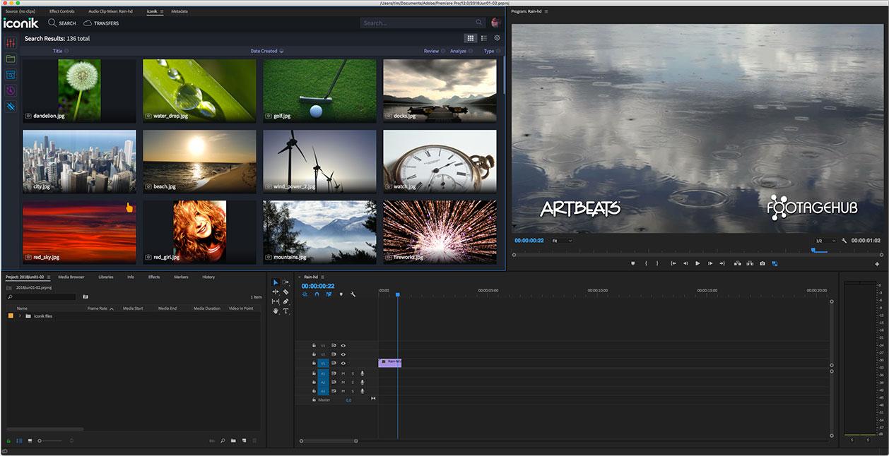 iconik Panel in Adobe Premiere Pro